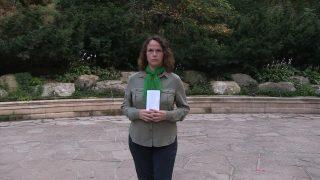 Deidra-Clutch-Letter